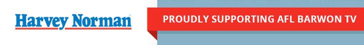 Harvey Norman Small Banner